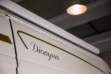 robeta dyonysus