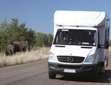 Namibia Elefant Wohnmobil