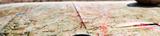 Der ADAC Routenplaner: Planen mit ADAC Maps