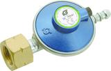 Standard regulator with PRV, auto excess flow valve