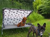 Dog Bed L 2 Hunde