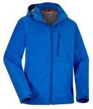 Labrador blue 600x600