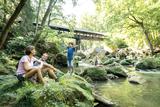Irreler Wasserfälle - AUFGRUND DER UNWETTERKATASTOPHE GESPERRT